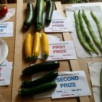Members Courgettes - 2014