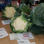 Open Carrot, Cauliflower & Cabbage 2015