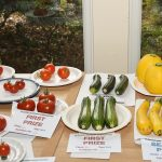Class 10 Courgettes