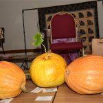 Class 79 Largest Pumpkin by Weight