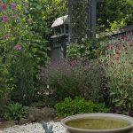 CHRON Interesting water feature in Mrs Poynton's Garden