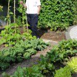 CHRON Mrs Poynter in her Vegetable Garden